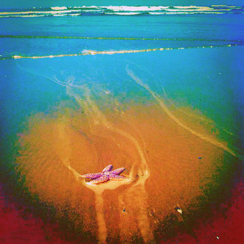 Sea Fuzz Groovin' with the Eternal Now album cover